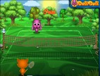 Partita-di-tennis-con-gli-animali
